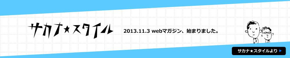 slide_ss1311